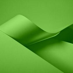 Papiertragetaschen und Tüten, grün